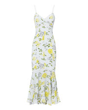 Jolene Gardenia Midi Dress, MULTI, hi-res