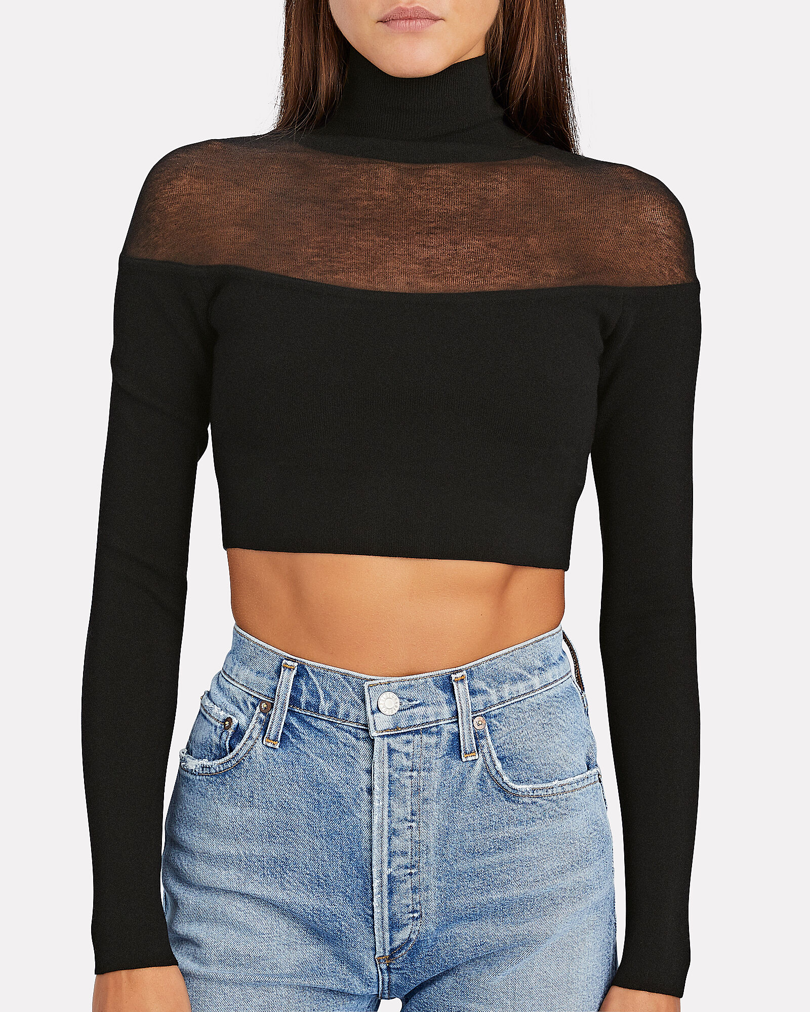 Semi-Sheer Turtleneck Crop Top, BLACK, hi-res
