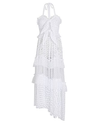Claudia Embroidered Mesh Maxi Dress, WHITE, hi-res